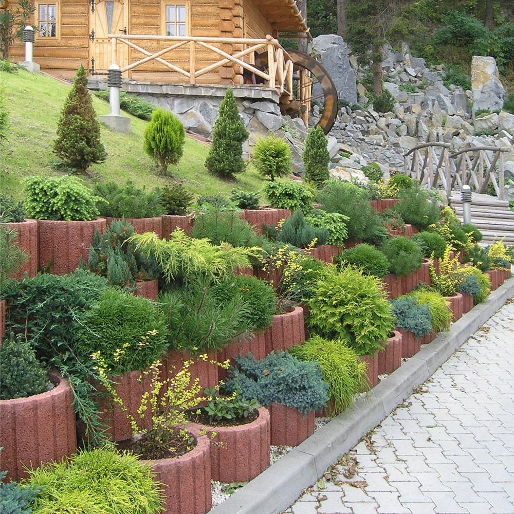 Gazony flora ksi yc bruk bet - Gartengestaltung mit pflanzringe ...
